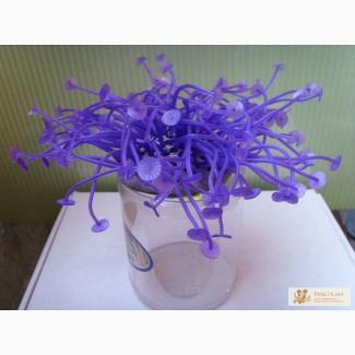 Актинии SH 279 - Искуственные силиконовые аквариумные растения