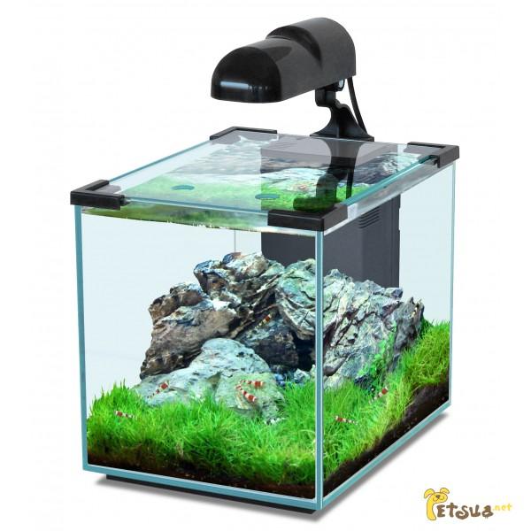 Фото 1/18. Аквариумные растения для небольших и нано аквариумов