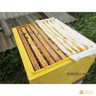 Пчелопакеты и Отводки
