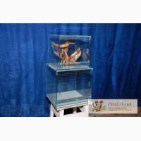 Продам террариум для содержания пауков и других членистоногих