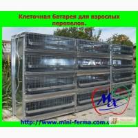 Клетки для содержания сельскохозяйственной птицы.