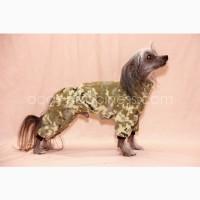Одежда для собак, рассела, пинчера, ксоло, таксы, бульдога, бигля. Украина