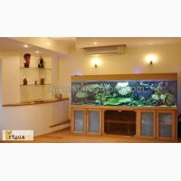 Эксклюзивные аквариумы на заказ. Обслуживание и чистка аквариумов