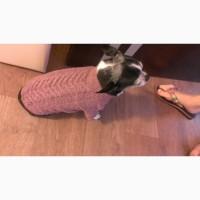 Вязаный свитер для котов и собак
