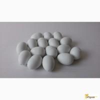 Яйца - обманки(муляжи) для голубей