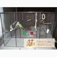 Клеткадля развидения попугаев