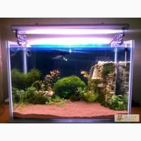 Цветные пески для аквариума и террариума