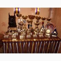 Взрослый кобель немецкий боксёр - чемпион Украины