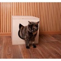 Домик лежанка для кошек, продам, доставка из Харькова