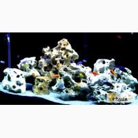 Камень для вашего аквариума