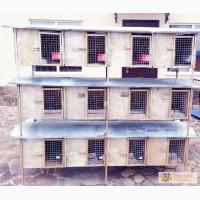Клетка для кроликов(мини ферма)
