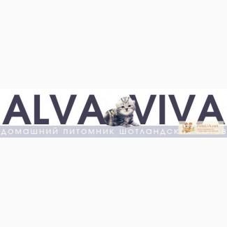 Услуги питомника ALVA VIVA.