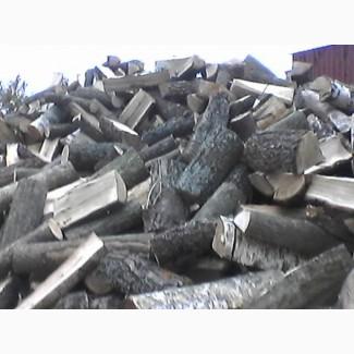 Продаю дрова колоті з доставкою Луцьк, Ковель, Ківерці