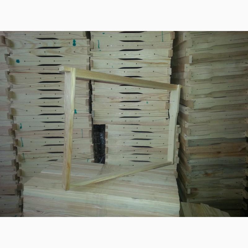 Фото 6. Продаются пчелопакеты, пчелосемьи Карпатской породы 2019семьи, матки