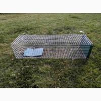 Клетка, живоловушка для отлова собак. Безопасная собаколовка
