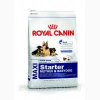 Royal Canin корм для собак maxi starter 15кг