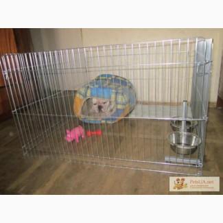 Вольер-загон для щенков, котят или мелких пород собак 100х100хh60 см (видео эксплуатации)