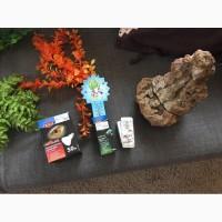 Террариум для рептилийполный комплект