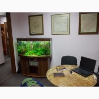 Обслуживание аквариумов в Черкассах