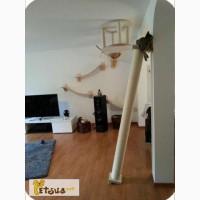 Интерактивные зоны для кошек от Джексона Гэлакси