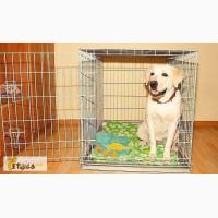 Клетки для собак 6. Размер 108х72х83 см Склад-магазин