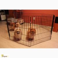 Квартирный манеж для собак или щенков мини пород 140х70х50 см