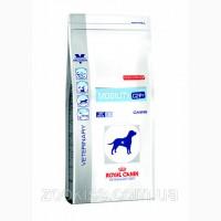 Royal Canin VD CANINE MOBILITY C2P+ для собак (Улучшение двигательных функций) 14kg