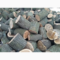 Реалізуємо дрова твердих порід (Дуб, Граб, Ясен) колоті, рубані, метровий кругляк Луцьк