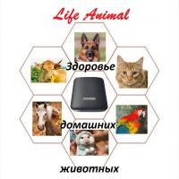 Помощь ветеринару прибор Life Animal 4 уровня мощности Гарантия изготовителя