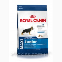 Royal Canin Maxi Junior (до 15 месяцев) 15кг