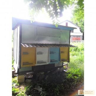 Продам пчелопавильон!!!