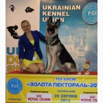 ВЕО! Продаются щенки восточно-европейской овчарки КСУ