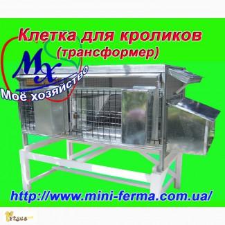 Клетки для содержания кроликов на улице
