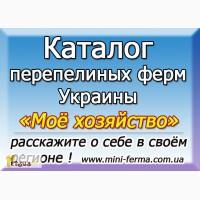 Где купить перепела в Украине